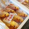2020年10月2日 小浜漁港 お魚情報