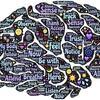 科学的に証明されたあらゆる判断で役立つ最強の思考法とは