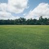 コロナ中に公園や散歩に行くときに注意!ミシガンの春夏秋はアレがでる!