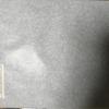 【手数料は184円】3205ダイドーリミテッド㈱ 株主優待品のタオル