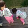 母である以上、貧困シングルマザーとは切っても切れない関係になるのですよ…:日本の貧困
