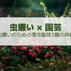 【害虫対策】虫嫌いが園芸・家庭菜園を楽しむための捕殺3種の神器