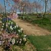 4つの花園を巡りました!(5)