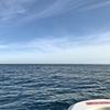 ホープボート/岡八丸で最後の日本海フィッシング💪  【  日本海ジギング&タイラバ遊び  】