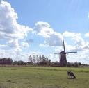 オランダ語の勉強記録