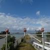 冬の沖縄でホエールウォッチングと飛行機ウォッチング