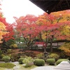 今まで訪れた京都の紅葉の名所、ベスト・オブ・ベスト