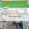ハノイ名物◆まぜまぜフルーツ『ホアクアザム』の老舗 / Trang Tri(チャンチー)他 @ハノイ(ベトナム)