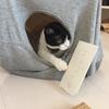 うちの末っ子、ハチワレ猫のはっぱの家と妄想国語辞典。