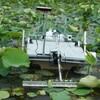 湖沼の在来水草問題、技術的には既に解決