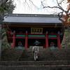 繊細な美しさ光る妙義神社へ