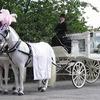 イギリスの霊柩車|結婚式だと思った話