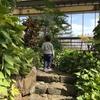 【水戸】自然を満喫できる水戸市植物公園はコスパ良すぎな件