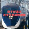 鉄子が選ぶおすすめ鉄道株10選!買うなら都市部を走る鉄道株がおすすめ!