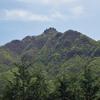 西上州(稲含山)の花々1   2011.5.15