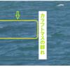 カラフトマスを釣る術(目)!/   今日の紋別港・沙留港偵察