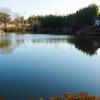 蛇ヶ寝池(愛知県大府)