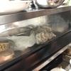 牡蠣が食べたい!