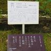 万葉歌碑を訪ねて(その1083)―奈良市春日野町 春日大社神苑萬葉植物園(43)―万葉集 巻八 一五三八)