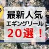 【2020年】最新人気エギングリール20選!予算別でオススメを紹介!
