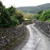 喜界島を含む奄美群島が世界遺産登録へ一歩前進!