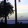 「有吉の壁」で話題のスパリゾートハワイアンズってどう?