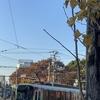 初冬の都電風景^^
