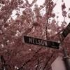 どんな道にも名前がある!ストリート名に感謝。