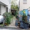 新丸子「HanaCAFE nappa69(ハナカフェ ナッパロクキュー)」