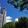 平成最後の夏が始まった