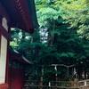 大國魂神社~夏越の大祓と再びの凶