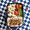 #744 セロリと鶏挽肉の焼き餃子弁当
