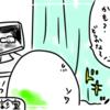 【妊娠・出産レポ③】妊娠中期・性別判明?!そして初3Dエコーとうっかり逆子編