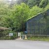 南光自然観察村キャンプその⑥佐用昆虫館