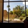 [アリゾナ留学生活]結構忙しい?海外現役留学生の平日スケジュール大公開!