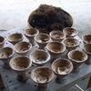 万葉集の時代の調味料「藻塩」