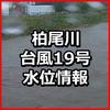 柏尾川の水位 大船駅戸塚駅近く 横浜市戸塚区避難情報あり 台風19号による大雨 氾濫警戒情報