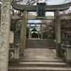 本日新元号「令和」が発表!新年度スタートで恒例の朔日参りに氏神様である代田八幡宮へ参拝してきました☆