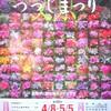 文京つつじ祭り始まりました&谷中の桜開花状況4月8日(土)2017年