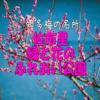 2021年 リピート2回目 知多 梅の名所 佐布里緑と花のふれあい公園【東海ドライブ】