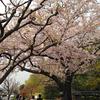 越谷市の花田苑に行ってきた。