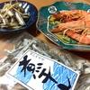 【763】お魚解禁🐟