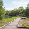 【大宮区】「合併記念見沼公園」カメや魚や鳥に出会える自然豊かな公園でのんびりしよう!