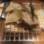 尾田栄せんせー(エイヒレ)はおいしい。