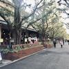 【外苑前】銀杏並木を眺めながら優雅なランチ★☆【KIHACHI青山本店】