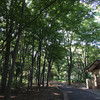 100年前のシステムキッチン?!@小金井公園の江戸東京たてもの園