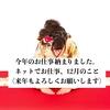 【ライティング】12月は11万円でした。(今日で仕事納めですヨ)