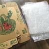 【節約】家にある物で米袋そりを作って遊ぼう!