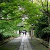 龍安寺の新緑を浴びた後は、HOME coffee standに体を預けてコーヒーを。