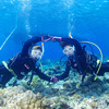 ♪元気な関西美少女、オープンウォーターおめでとう♪〜沖縄ダイビングライセンス in 慶良間諸島〜